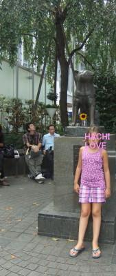 HACHI_1.jpg