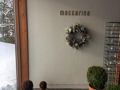 macca2.jpg