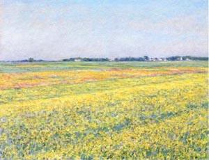 カイユボットジュヌヴィリエの平野、黄色い畑.jpg
