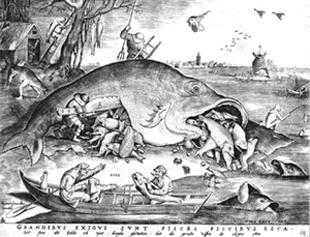大きな魚は小さな魚を食う - コピー.jpg