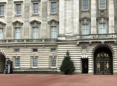 London_Baccinngam.jpg