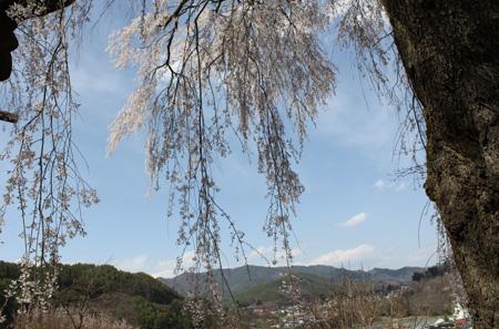 takatoukatuma4.jpg